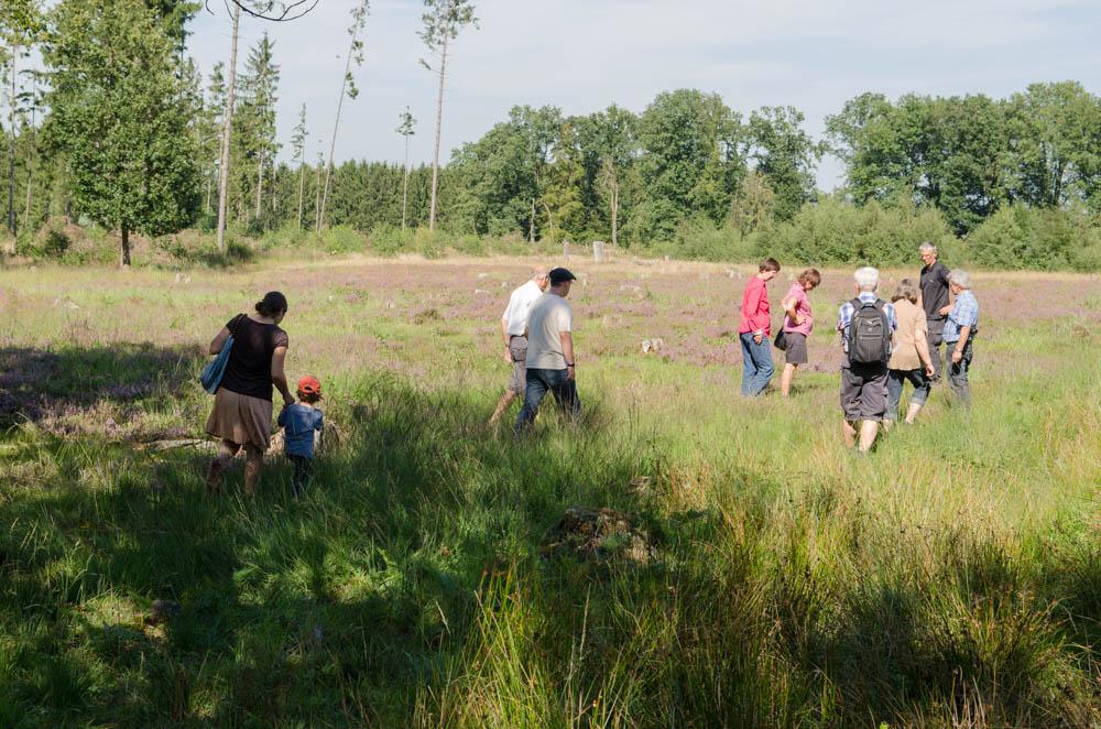 Tag der Heide im Buchholzer Moor –ein Rückblick