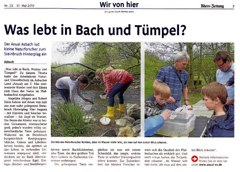 Rhein-Zeitung 31.06.2013