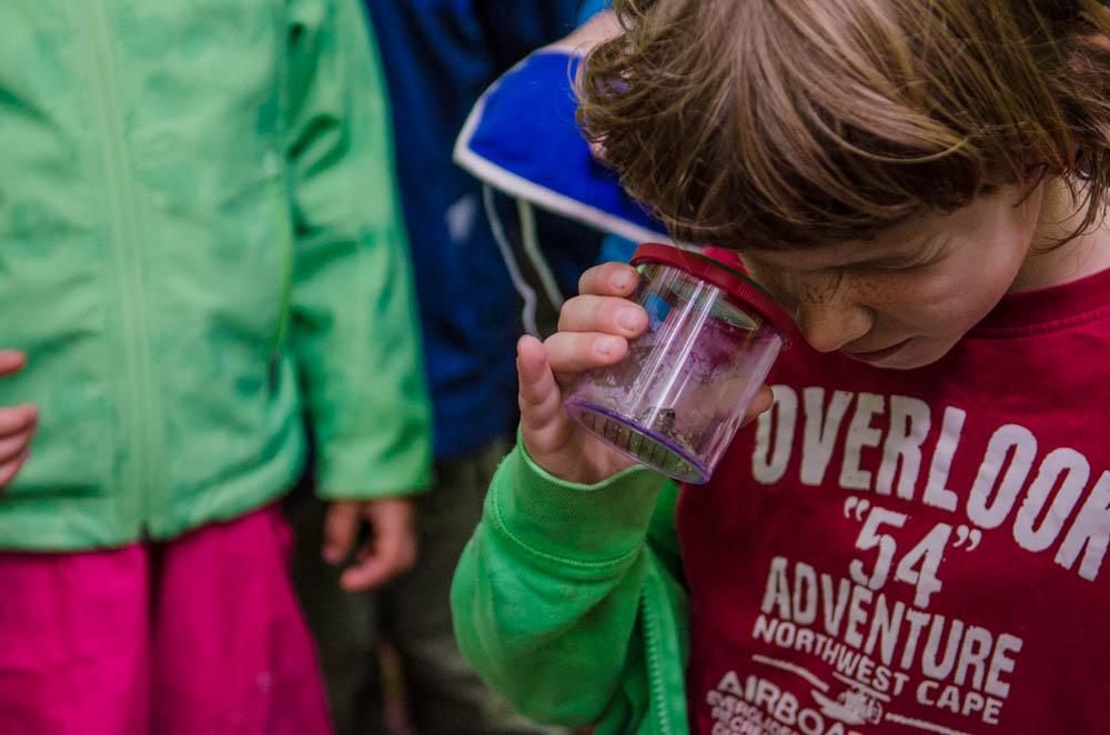 Kinder und Eltern erleben gemeinsam die Natur – Zelten am Pfaffenbach