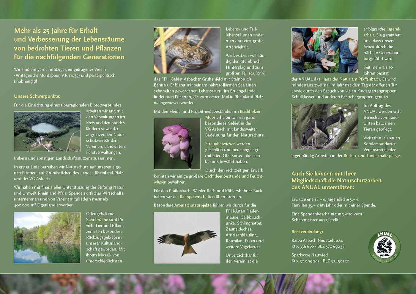 Anual Broschuere 2011_Seite_2