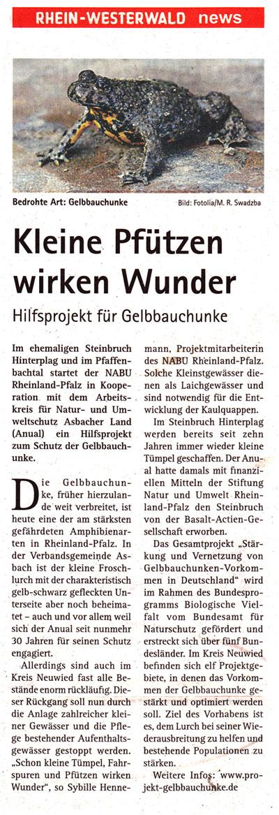 RW-News 22.02.2014