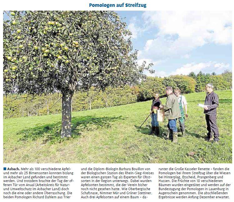 Rhein-Zeitung 29.10.2014