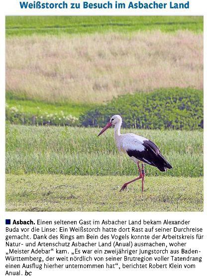 Rhein-Zeitung 31.08.2012