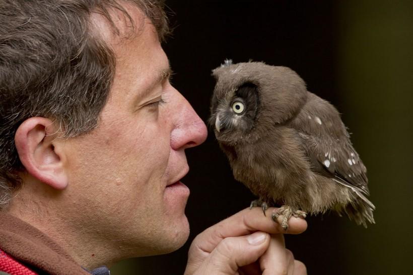 Unsere einheimische Vogelwelt kennen lernen