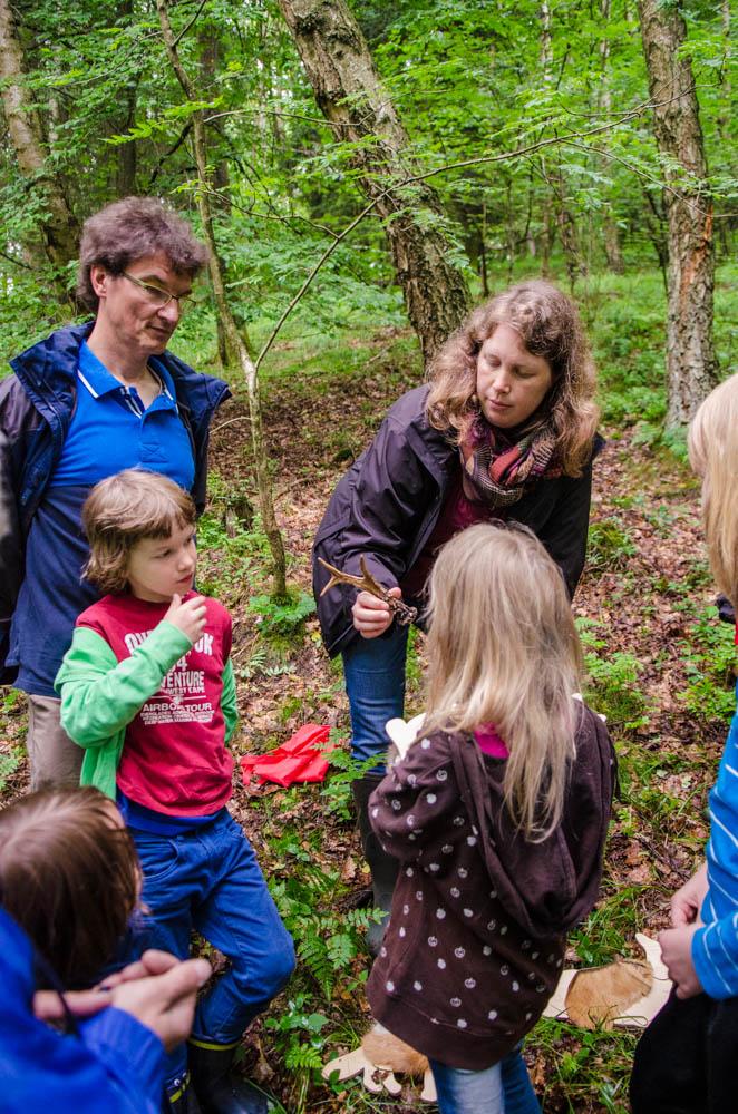 Försterin Anne Grobbel zeigte den Kindern die Bewohner des Waldes