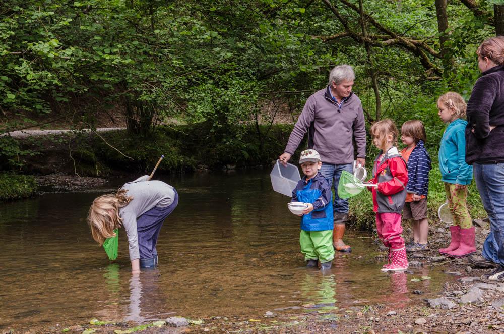 Vorsitzender Robert Klein und die Kinder erkunden mit Kescher und Sieb die Tierwelt des Pfaffenbachs