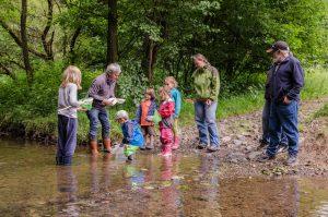 Robert Klein und die Kinder erkunden die Tierwelt des Pfaffenbachs