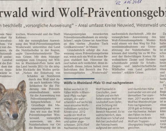 Rhein-Zeitung vom 01.06.2018
