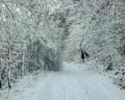 Winter im Asbacher Land Robert Klein (Foto: Robert Klein)