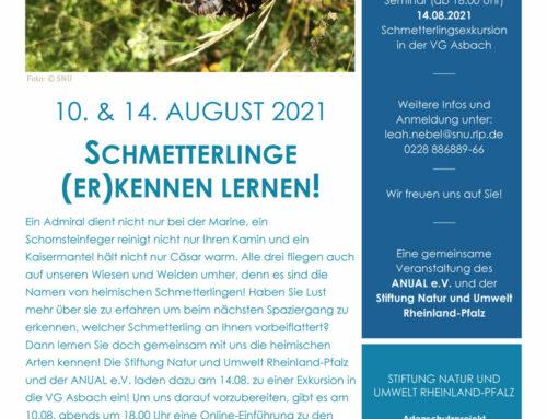 Schmetterlingsexkursion 14.08.2021